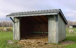 portable-sheds2